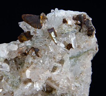 Chalcopyrite and Quartz - Neve quarry, Masso, Liguria, Italy