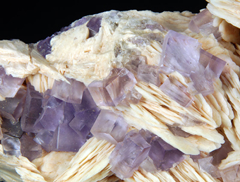 Fluorite and Baryte, Berbes mine, Asturias, Spain