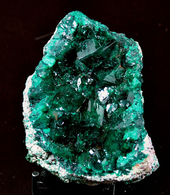 Dioptase - Tantara Mine, Shinkolobwe, Katanga Copper Crescent, Katanga (Shaba), Democratic Republic of Congo (Zaïre)