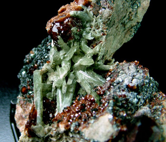 Diopside with Grossular var. Hessonite - Bellecombe, Châtillon, Aosta Valley, Italy
