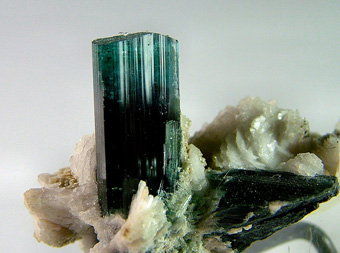 Indicolite with Muscovite on Albite - Skardu, Skardu District, Gilgit-Baltistan, Pakistan