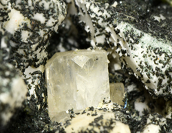 Apatite on Albite (var. Pericline) - Trentino A. Adige, Italy
