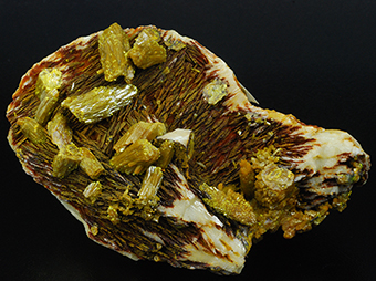 Pyromorphite over baryte - Les Farges mine - Ussel - Corrèze - France