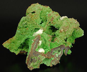Conichalcite and calcite - Ojuela mine - Mapimì - Mun. de Mapimì - Durango -Mexico