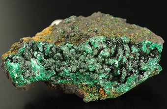 Heterogenite and malachite - L'Etoile du Congo mine - Lubumbashi - Katanga Copper Crescent - Katanga - Zaire