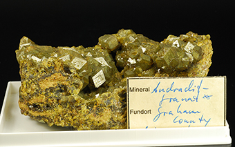 Andradite garnet - Quartzite Mountain  Stanley Distr. - Santa Teresa Mts - San Carlos Indian Reservation - Graham Co. - Arizona - USA