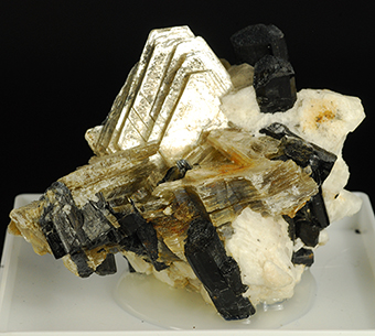 Tourmaline over albite with muscovite -Stak Nala - Haramosh Mts -Skardu distr. - Baltistan - Northern Areas - Pakistan