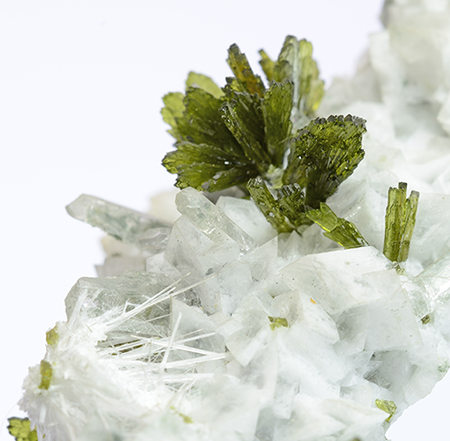 Epidote with Scolecite -   Gneiss quarries, Arvigo, Calanca, Calanca Valley, Moesa, Mesolcina Valley, Grischun, Switzerland
